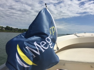 A blue MegaCorp flag blows in the wind off of the side of a motor boat.