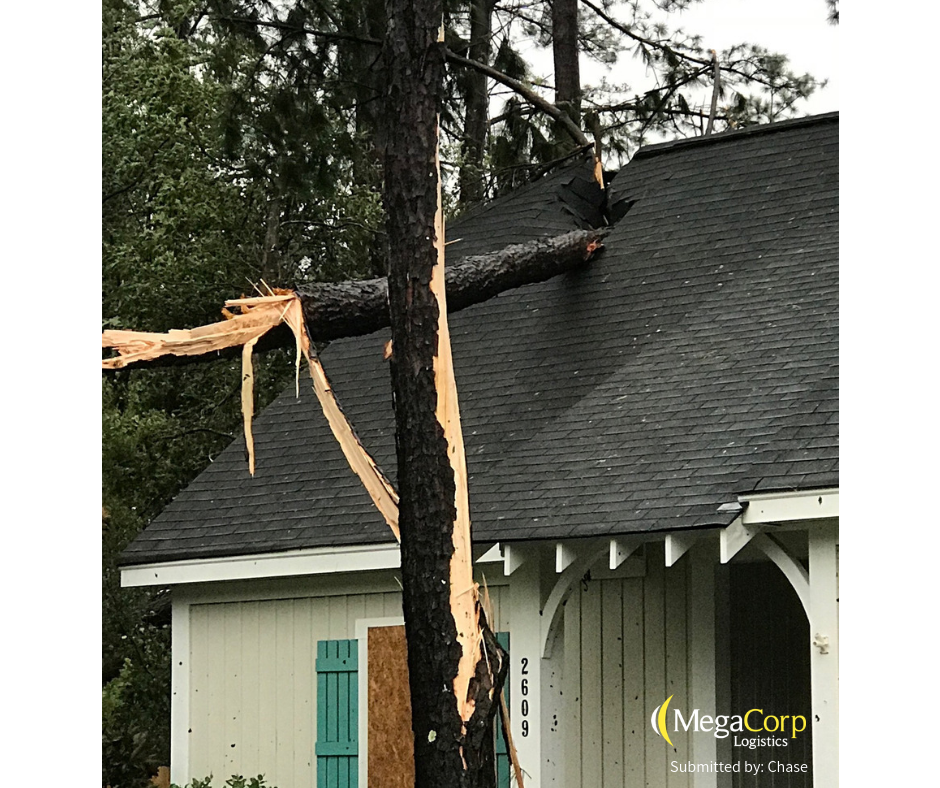 A tree snapped in half and left a hole in the roof of a house.