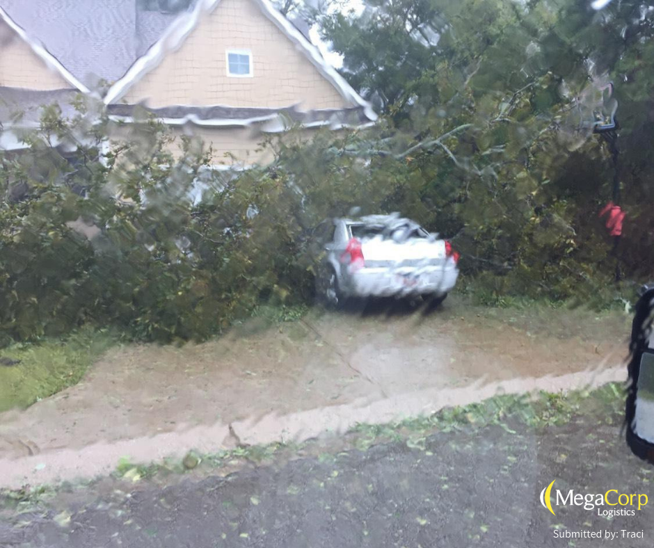 A tree that has fallen on top of a car.